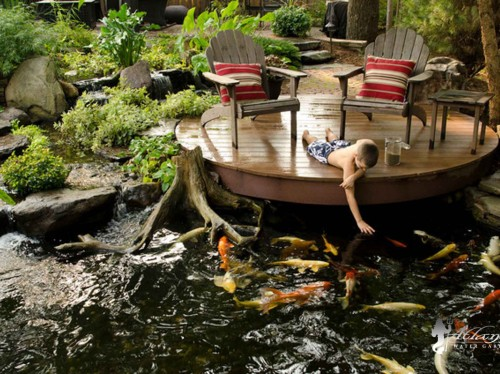Koi Ponds by Atlantis Water Gardens - Denville NJ