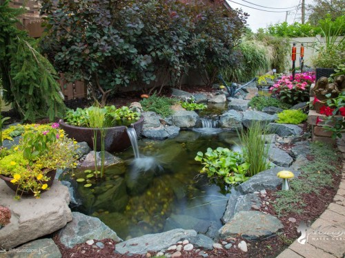 water garden services by atlantis water gardens morris county nj