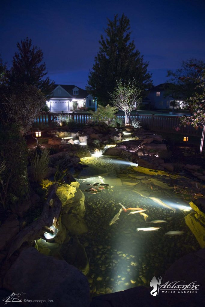 ecosystem koi pond with lighting installations