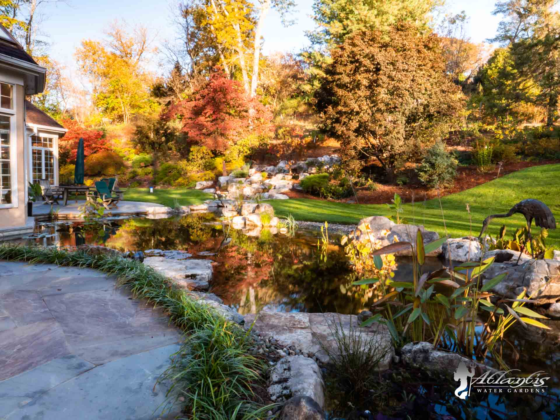 Pond fall Maintenance & shutdowns - Atlantis Water Gardens - Mendham NJ-24