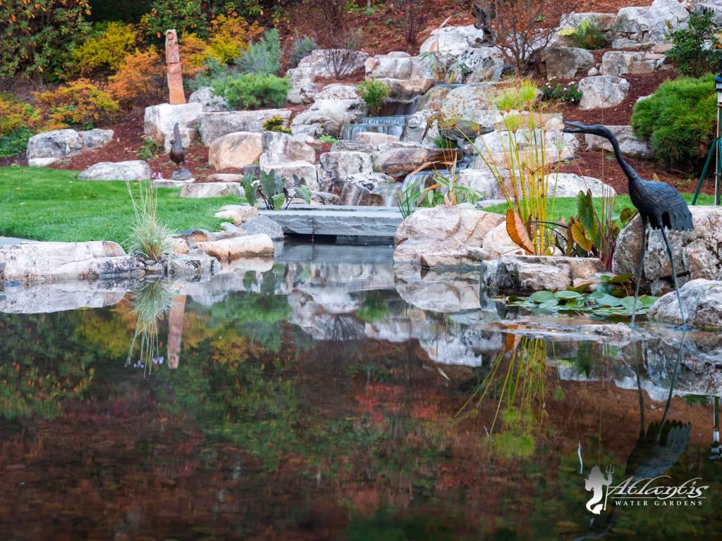koi pond picture by atlantis water gardens denville nj