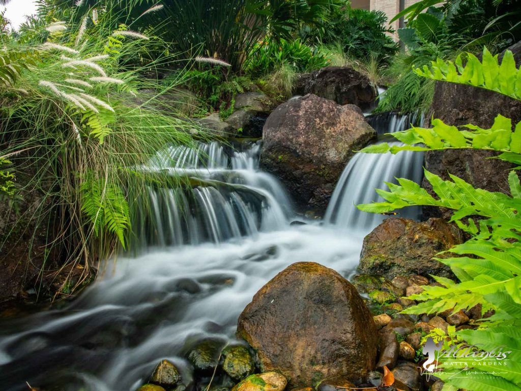 amazing pondless waterfall by atlantis water gardens