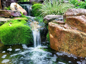 small backyard waterfall with natural moss